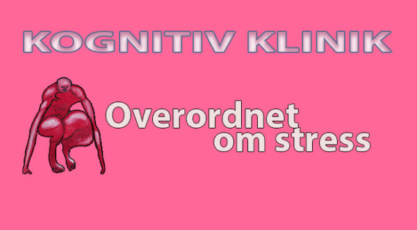 I videoen beskrives Stress overordnet