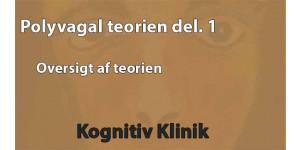 Psykiater Leif Vedel Sørensen fortæller i videoen grundlæggende om Polyvagal teorien